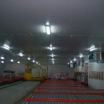 TM Cold Room